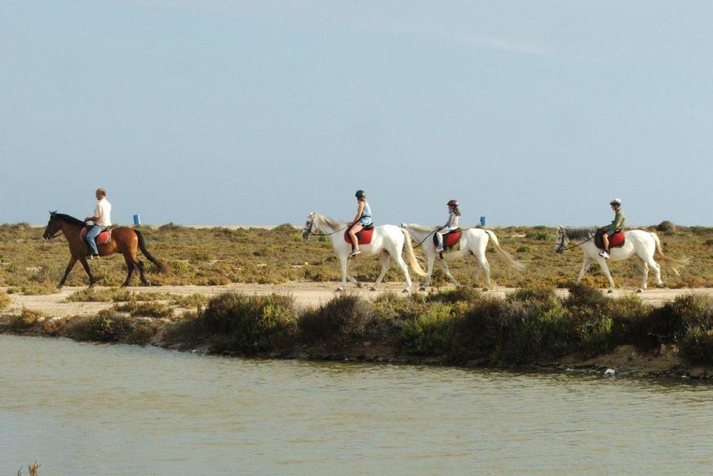 Actividades a caballo en Alicante