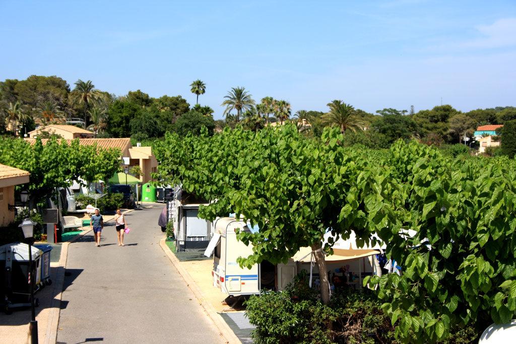 Campsite in Benidorm with plots