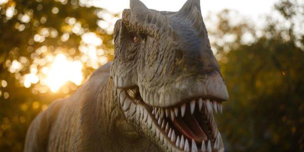 Dino Park Callosa