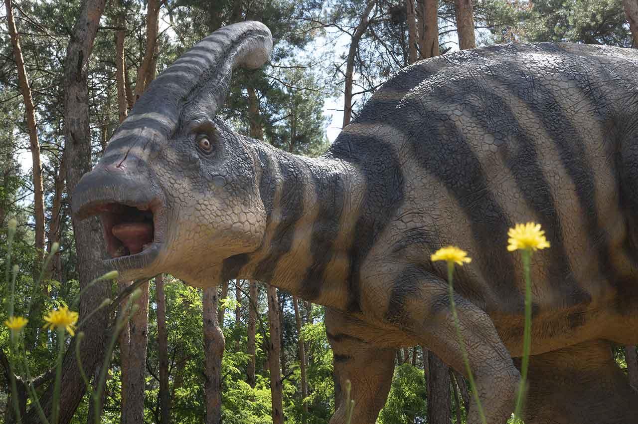 Como llegar a Dino Park Callosa