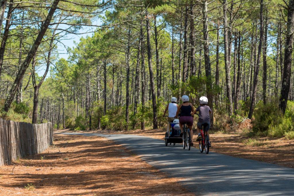 Paseo en bici familia